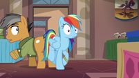 Rainbow Dash bumps into Quibble Pants S6E13