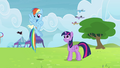 Rainbow Dash prefers winners over non-winners S4E10.png