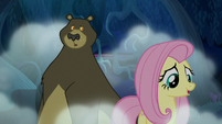 Shadow speeds behind Fluttershy and Harry S6E15