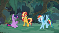 Sunset, Sci-Twi, and RD as ponies in the forest EGSB