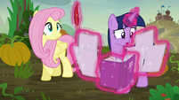 Twilight --they both want to win a fight-- S5E23