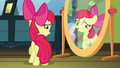 """Apple Bloom """"never thought I'd be so happy"""" S5E4.png"""
