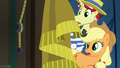 Applejack and Flim in shock S6E20.png