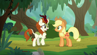 "Autumn Blaze ""perhaps you're tired"" S8E23"