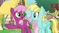 Cheerilee pointing at Princess Ember S7E15.png