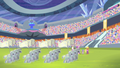 Equestria Games golden Crystal Empire flags S04E24.png