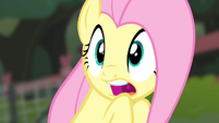 Fluttershy shocked S4E14