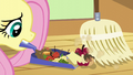 Fluttershy sweeping up garbage S6E11.png