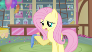Fluttershy trying her best S3E13