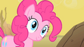 Pinkie Pie I am S01E21.png