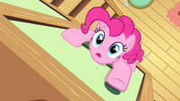 Pinkie Pie climbing up the wall S4E14