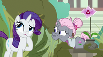 Rarity thinking of something S7E25