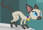 S4E9 Unnamed Cat 4 ID EG2