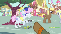 Trenderhoof pointing towards an old mare S4E13