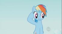 206px-Rainbow Dash Confused S2E7