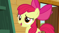 Apple Bloom --help you find your purpose-- S6E19