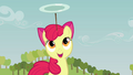 Apple Bloom continuing to balance the plate S3E08.png