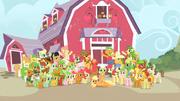 Applefamily