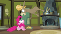 Cranky yelling at Pinkie S2E18.png