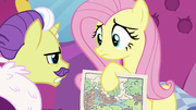 Dandy disapproves of Fluttershy's color scheme S7E5