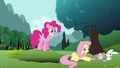 Fluttershy 'Not especially' S3E3.png