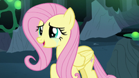 Fluttershy Changeling happy to see Discord S6E26