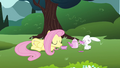 Fluttershy drinking from cup S3E3.png