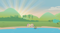 Fluttershy prodding at turtle S1E05
