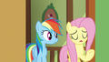 Fluttershy starts to sing S6E11.png
