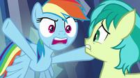 """Rainbow Dash """"come on!"""" S8E22"""