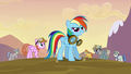 Rainbow Dash very happy S2E22.png