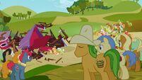 S03E08 Kucyki przyglądają się zburzonej stodole