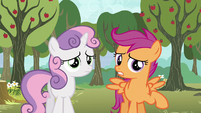 Scootaloo -we both sort of got our cutie marks- S5E4