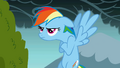 A grumpy Rainbow Dash S01E07.png