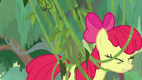 Apple Bloom struggles against vines S9E22