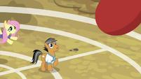 Buckball flying toward Quibble Pants S9E6