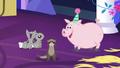 Fluttershy's animal friends S5E3.png
