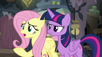 "Fluttershy ""why are you in Mage Meadowbrook's home?"" S7E20"