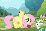 Fluttershy table