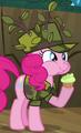 Pinkie Pie camo ID S2E21
