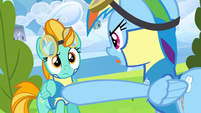 Rainbow Dash yelling at Lightning Dust S3E07