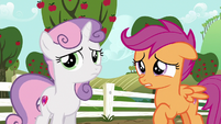 Scootaloo --you must have been really upset-- S6E19