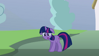 Twilight being shadowed S3E05