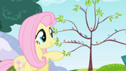 201px-Fluttershy smiling at the birds S1E1