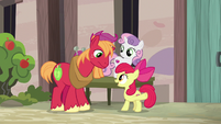 Apple Bloom cheering on Big McIntosh S7E8