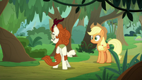 "Autumn Blaze ""of course you haven't"" S8E23"