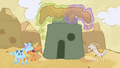 Cows magically remove sand from desert village S7E11.png