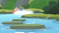 Fish jumping through the stream S8E6