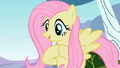 Fluttershy excited 2 S2E07.png