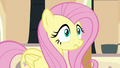Fluttershy hears a chirping sound S6E11.png